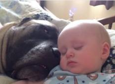 Dvignite glasnost tega videa in prisluhnite temu otroku in kužku, kako si delita najbolj dragocen čas