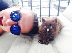 Tale mačka je bila zelo bolna in tik pred tem, da pogine. Toda deklica jo je posvojila in poglejte, kaj se je zgodilo z mačko ...
