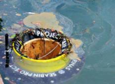 Izdelali odtok za smeti sredi oceana - ki bo pobiral smeti