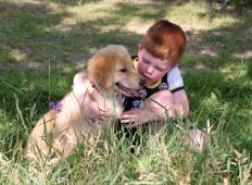 Deček želel kupiti psa brez noge, toda lastnik mu je dejal, da nič ne bo imel od njega. A potem deček pove svojo resnico ...
