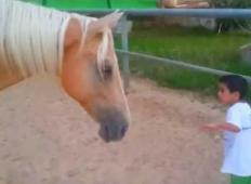 Njen sin ima redko bolezen. Ko je prišel prvič v stik s konjem, je mama posnela nekaj ganljivega ...