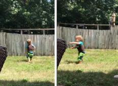 Majhen fantek je k sosedovim čez ograjo vrgel žogo. To, kar sledi potem ...