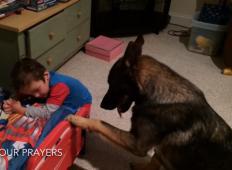 Prijatelji jim niso verjeli, ko so rekli, kaj počne njihov pes, zato so posneli video kot dokaz. Poglejte to!