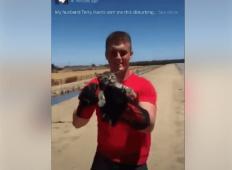 Fant je vzel v roke mačko in jo brutalno zalučal v jezero. Ljudje so zgroženi ...