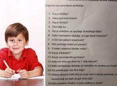 To so vprašanja, ki jih dobivajo slovenski učenci v 3. razredu. Začudili se boste ...