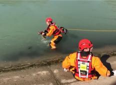 Mariborski gasilci iz Drave rešili majhno srnico! Utopila bi se, če ne bi gasilci storili tega ...