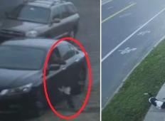 Lastnik je svojega kužka odvrgel na parkirišču in se odpeljal. Poglejte, kaj je nato v strahu naredil kužek ...