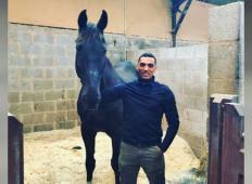 Ta konj je bil težaven in nihče v vojski ga ni hotel, razen tega vojaka. Ko se je konj upokojil, se zgodi nekaj izjemnega!