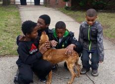 4 mladeniči rešili psičko, ki so jo našli privezano in lačno. Poglejte, kaj so storili potem ...