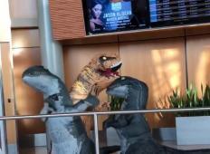 Babica in dva vnuka se srečajo na letališču, oblečeni v dinozavre. To morate videti!