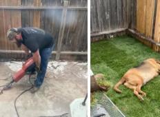 Garal je cel vikend. Njunemu psu, ki ga je zavrglo 5 družin, je uredil prostor, ki si ga zasluži!