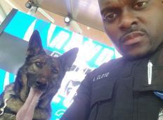 Policist je delal selfija s službenim psom. Ko so se slike razširile …