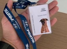 Znana znamka avtomobilov zaposlila psa. Kako in zakaj? Poglejte!