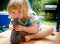 Imate radi svoje hišne ljubljenčke? Potem se vam bo ob ogledu teh fotografij pričaral nasmešek na obrazu!